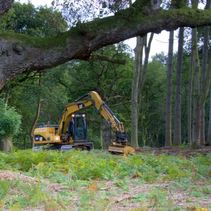 Forestry Clearing Equipment - Cat 312 Mulching Croft