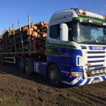 Forestry Clearance - Scania loaded with timber