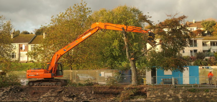 Forestry Machinery Tree Shears being used in Kingsbridge