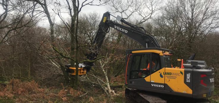 Forestry clearance - tree shears