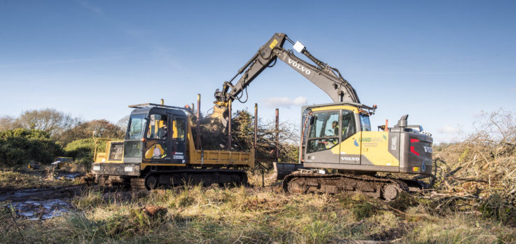 Cornwall Wildlife Trust Excavator and Dumper clearance