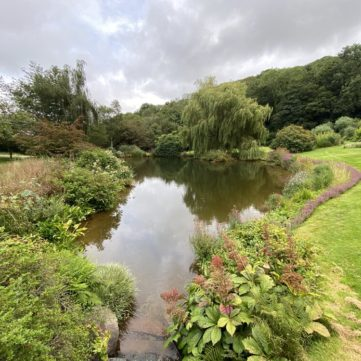 Little Coombe pool